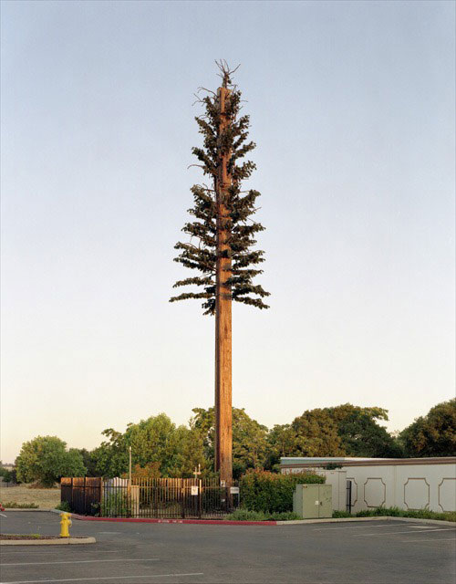 31 Exemplos de torres de celular disfarçadas 23