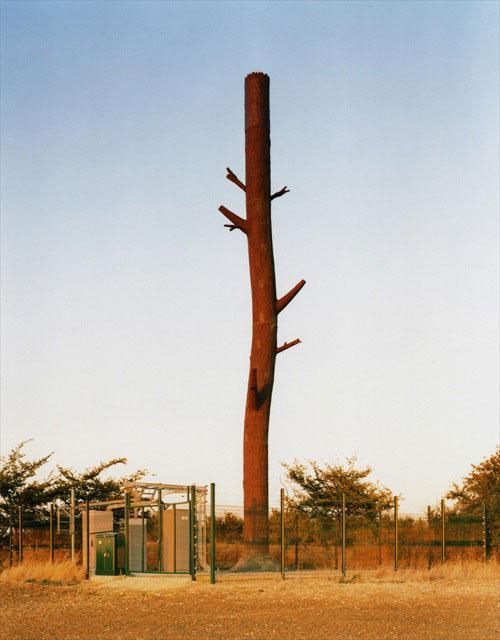 31 Exemplos de torres de celular disfarçadas 25