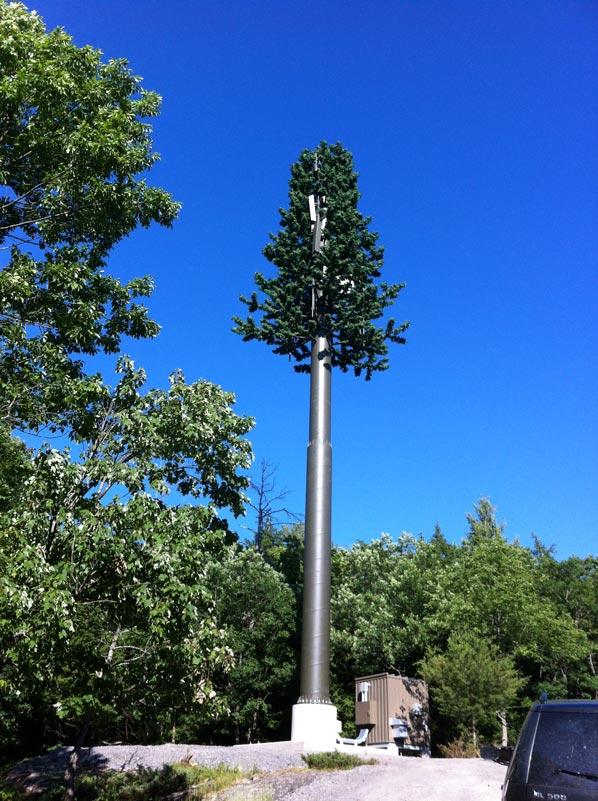 31 Exemplos de torres de celular disfarçadas 26