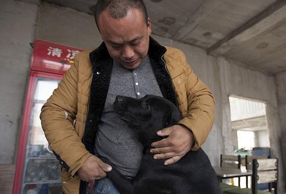 Ex-milionário chinês gasta toda a sua fortuna resgatando cães