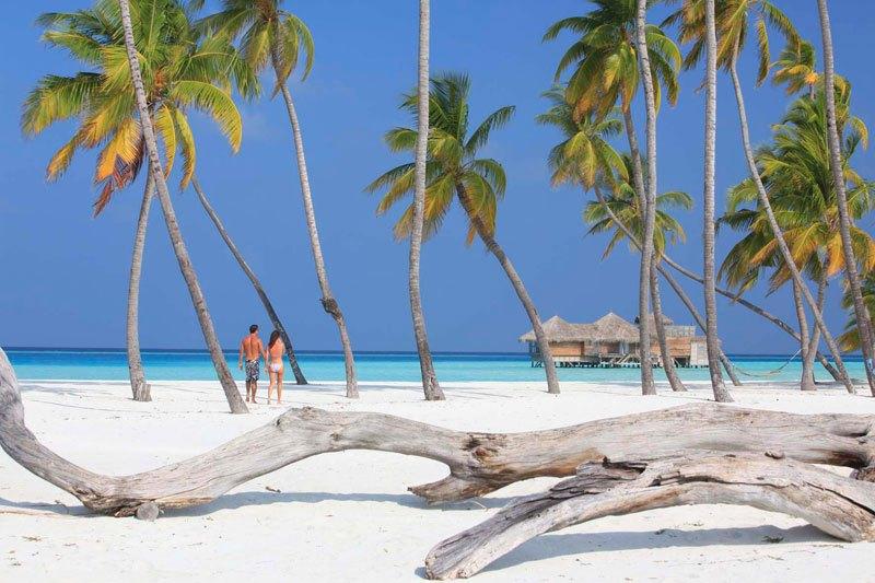 Este resort nas Maldivas foi nomeado o melhor hotel de 2015 no TripAdvisor 09
