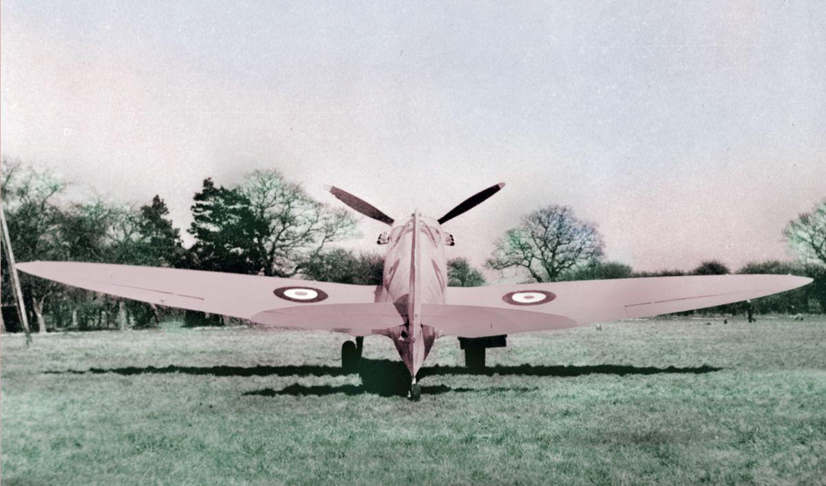 De aviões cor-de-rosa a vacas pintadas: o lado estranho da Segunda Guerra Mundial 08